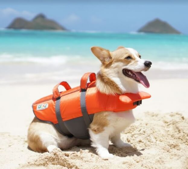 Dog Life Jacket - Outward Hound