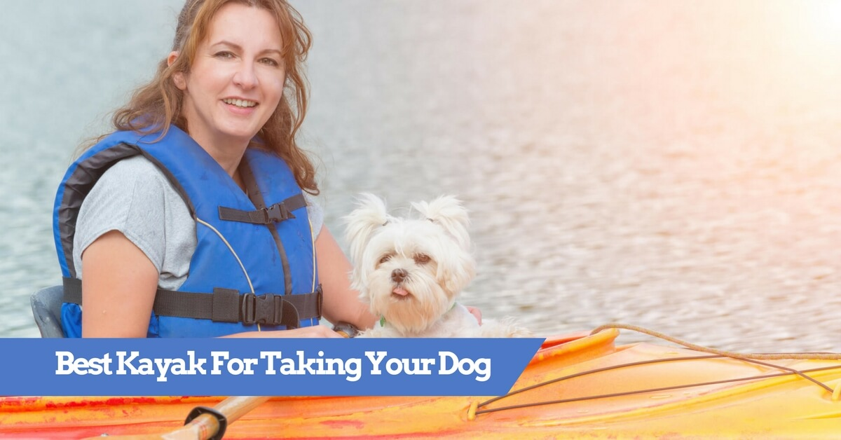 Best Kayak For Dogs 2019 - Top Rated Dog Yaks (inc