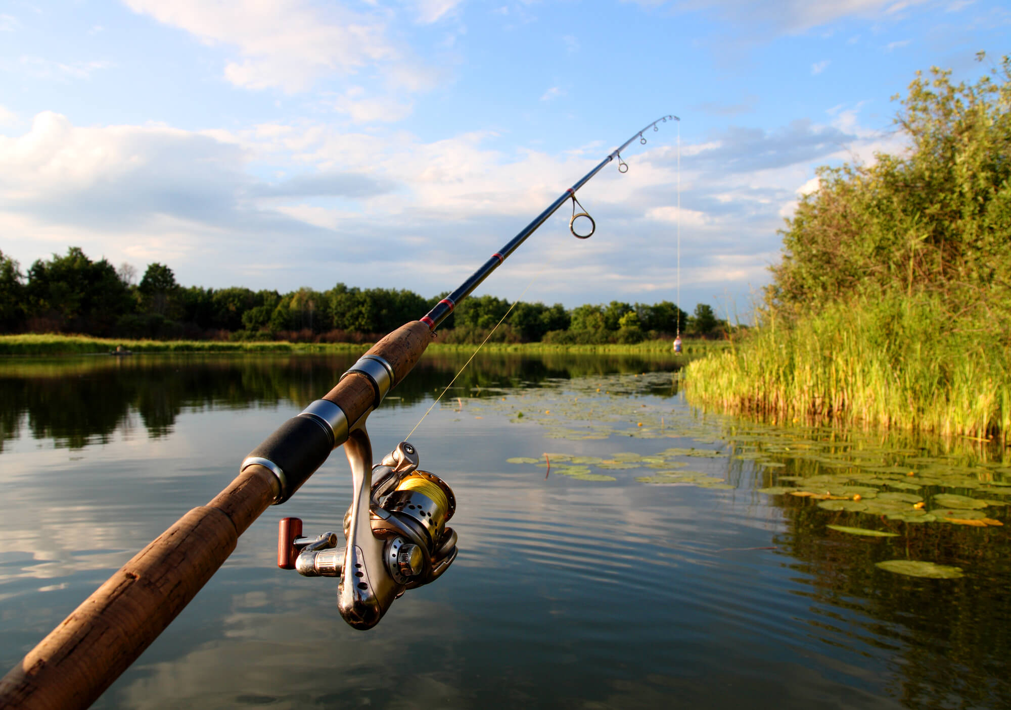 Spinning Reel Rod and Lake