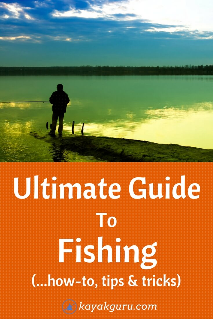 Ultimate guide to fishing how to catch fish basics for for Beginners guide to fishing