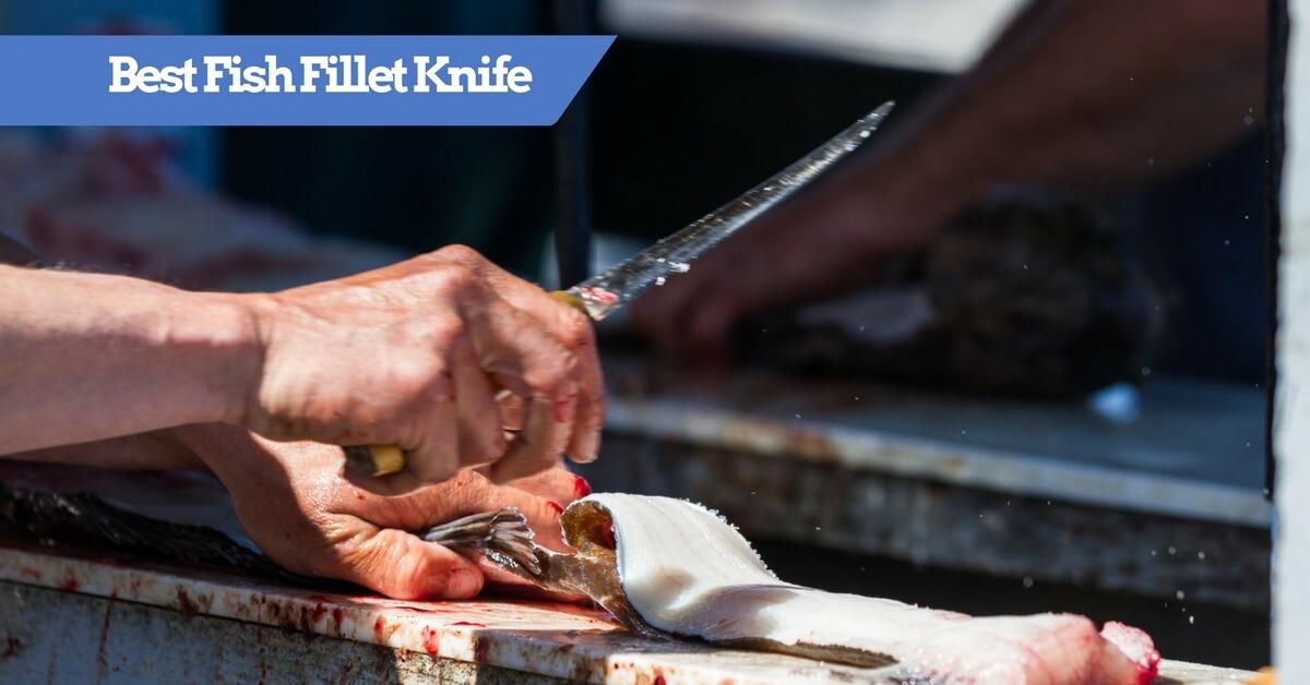 The Best Electric Fillet Knife