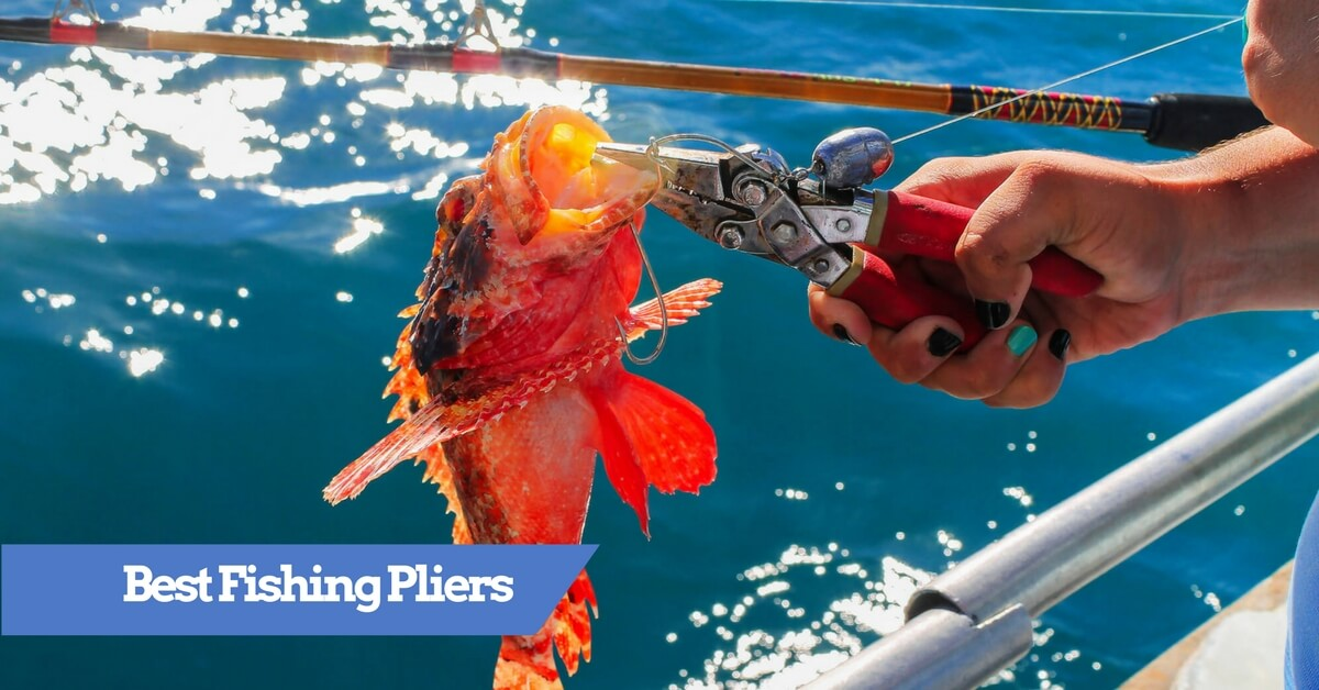 Best fishing pliers 2018 saltwater and fly fishing for Best fishing pliers