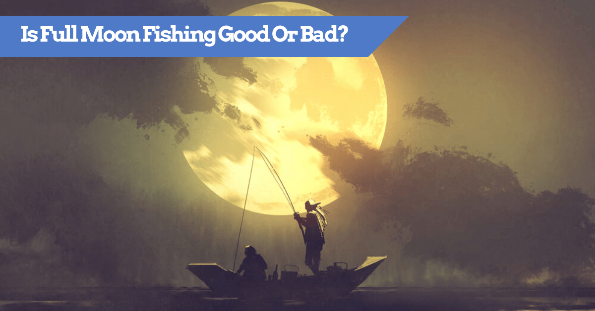 Is Full Moon Fishing Good Or Bad?