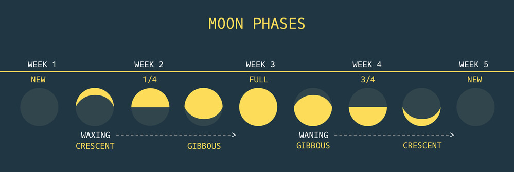 Moon Phases - Is Full Moon fishing good or bad?