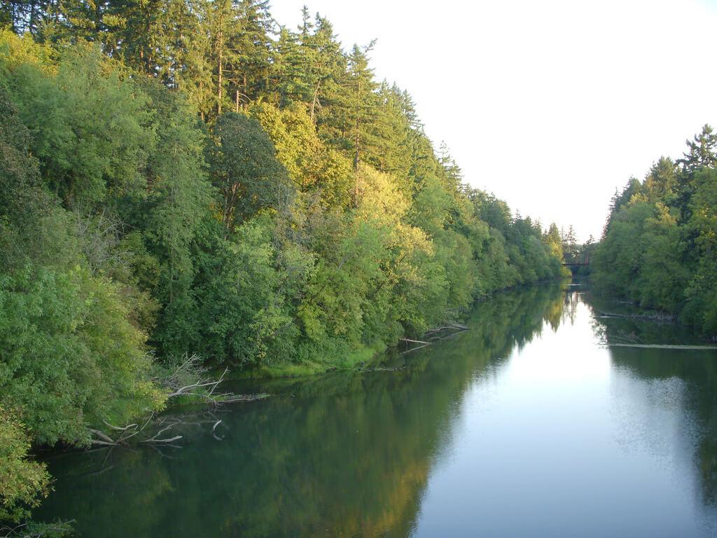 Kayaking and canoeing trips Tualatin River Oregon