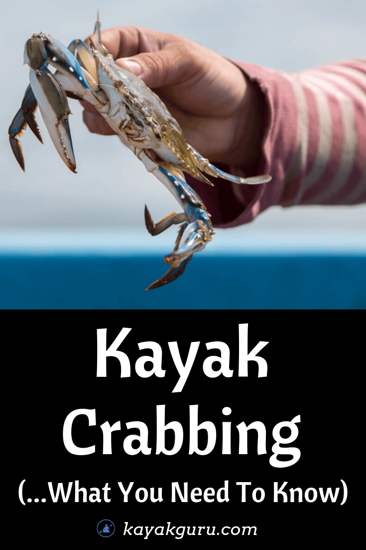 Kayak Crabbing - What You Need To Know - Pinterest Image