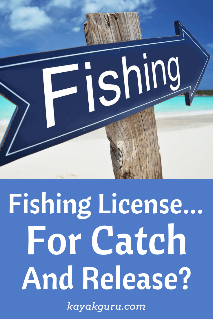 Do You Need A Fishing License For Catch And Release? - Pinterest Image