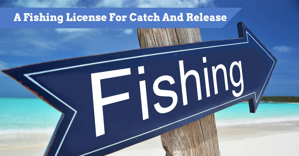 Do You Need A Fishing License For Catch And Release?