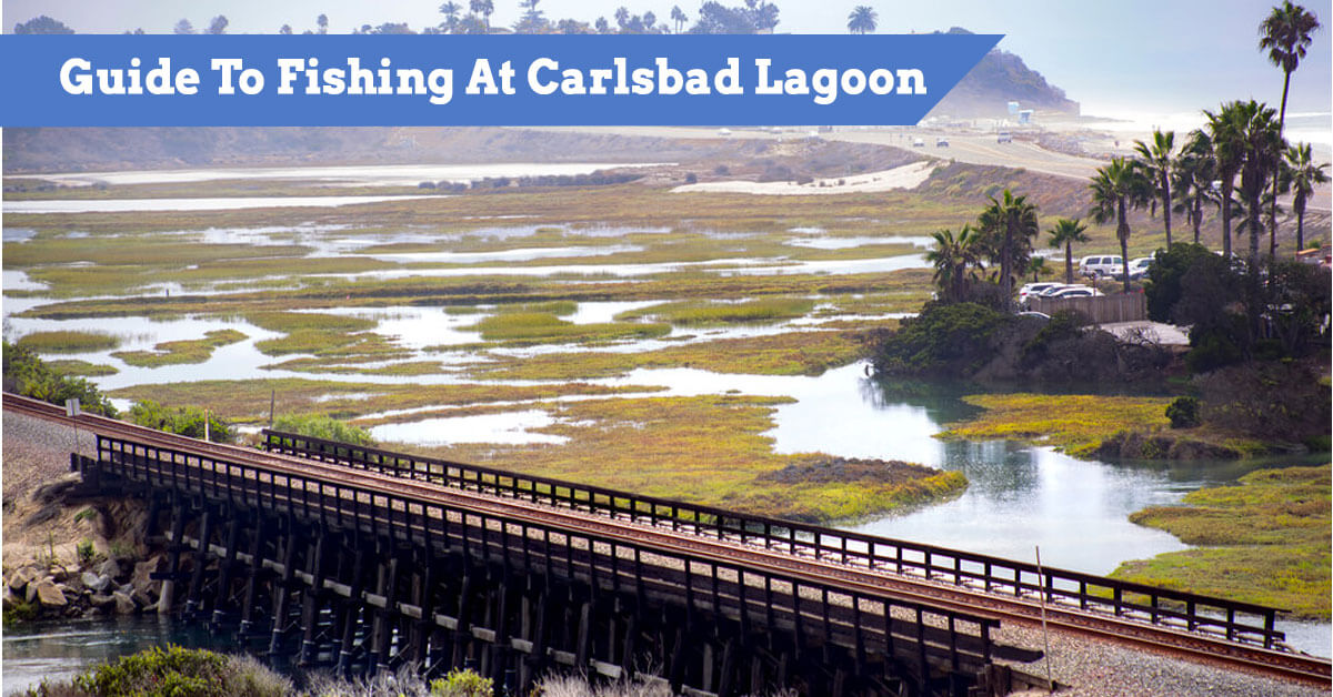 Guide To Fishing At Carlsbad Lagoon