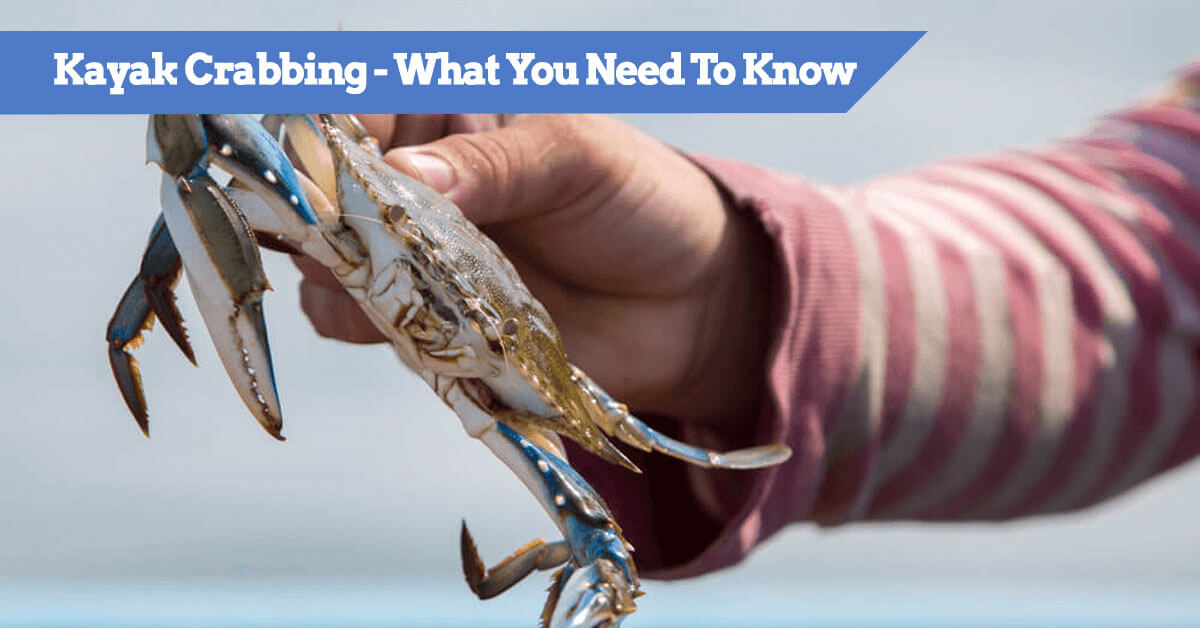 Kayak-Crabbing--What-You-Need-To-Know - Tips and guide on catching and setup