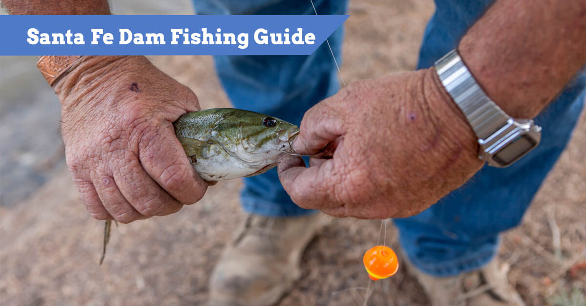 Santa Fe Dam Fishing Guide