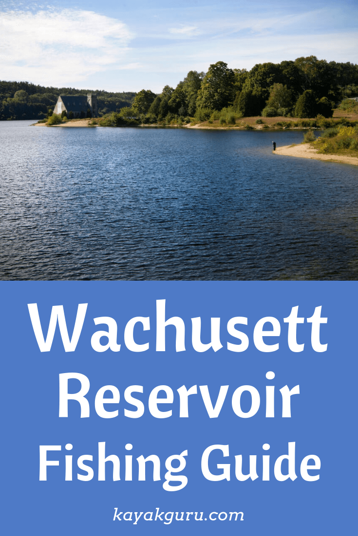 Wachusett Reservoir, Massachusetts Fishing Guide - Pinterest Image