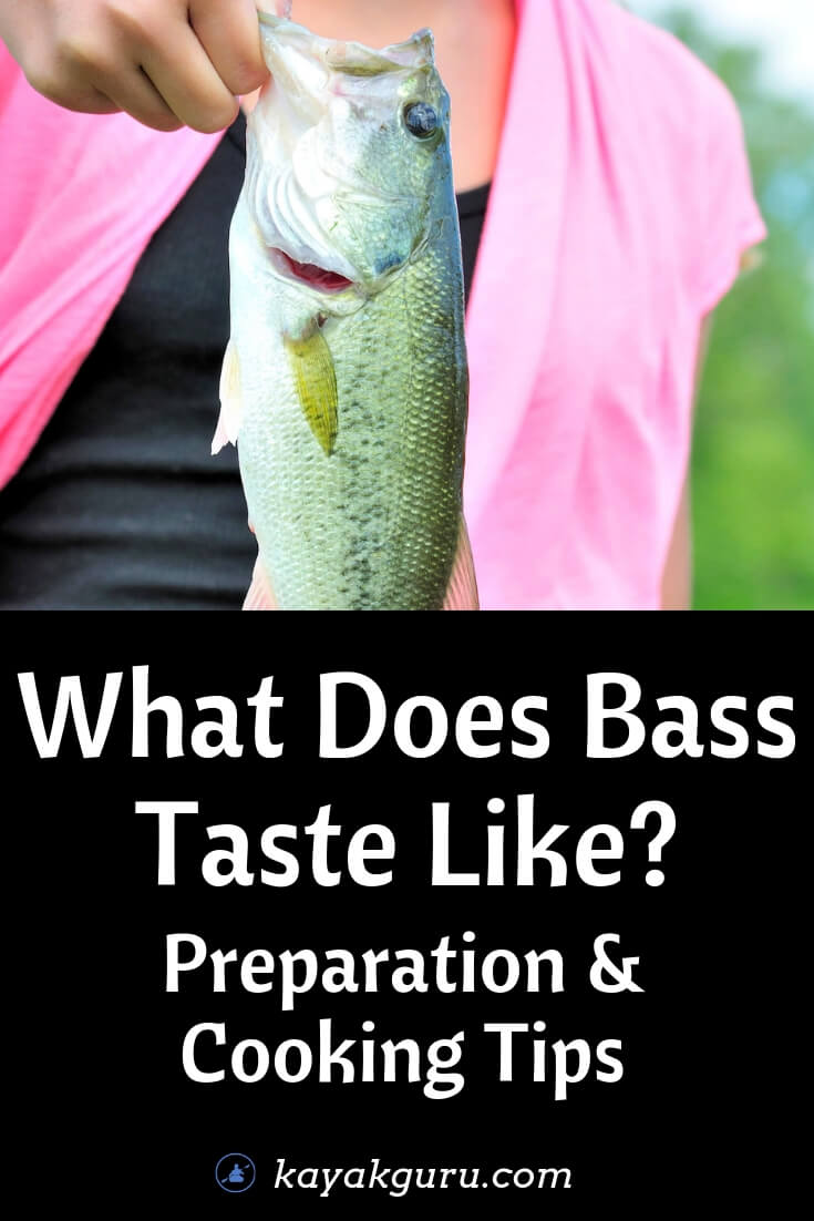 What Does Bass Fish Taste Like - Preparation and Cooking Tips and recipe