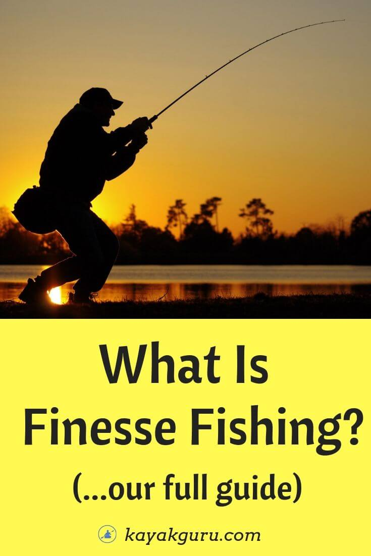What Is Finesse Fishing? - Pinterest
