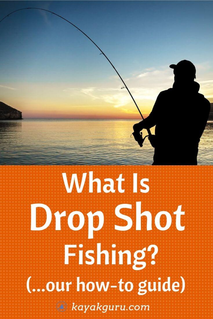 What Is Drop Shot Fishing - Our How-To Guide - Pinterest
