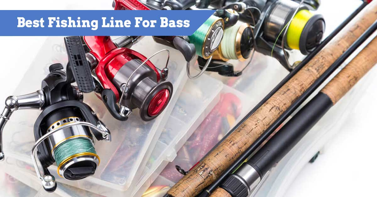 The Best Fishing Lines for Bass