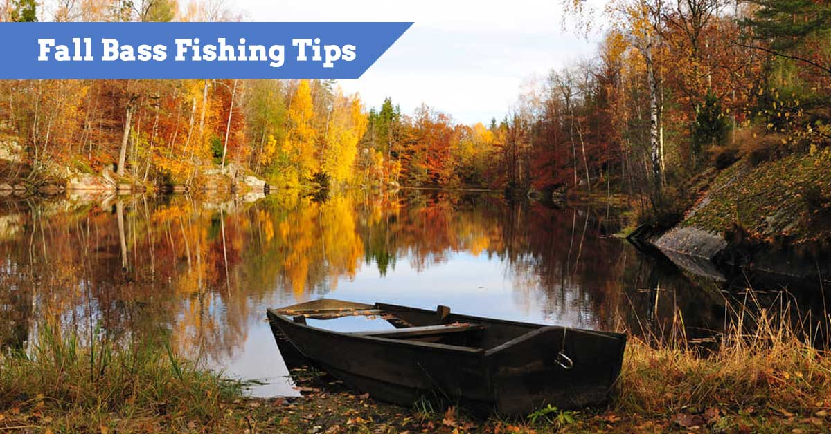 Fishing tips for catching bass in the Fall