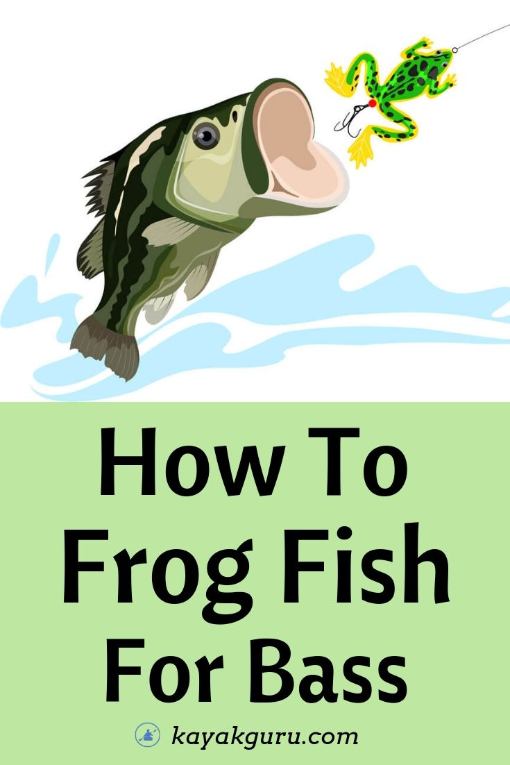 How To Frog Fish For Bass - Pinterest Image