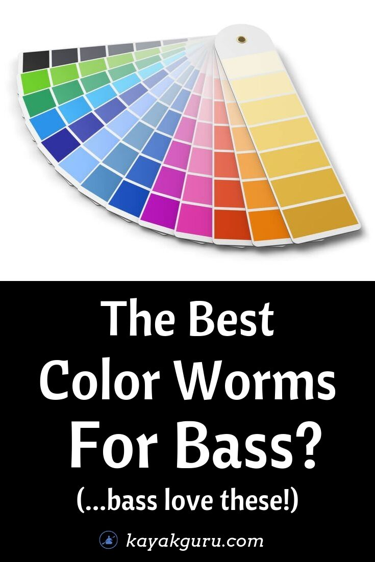 What Are The Best Color Plastic Worms For Bass- Pinterest Image