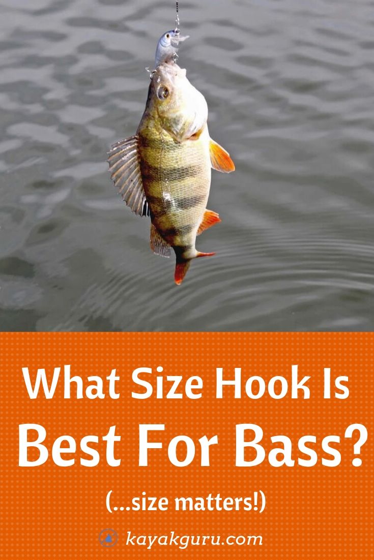 What Size Of Hook Is Best For Bass? - Pinterest